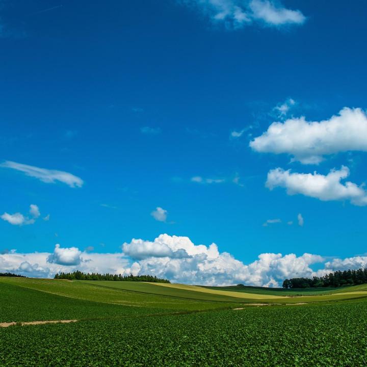 大自然の北海道で絶景を眺望